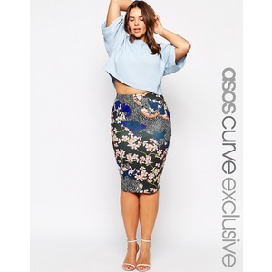 Asos Curve Young Fashion